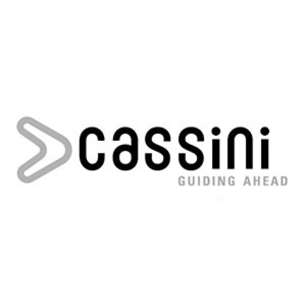 Cassini Consulting